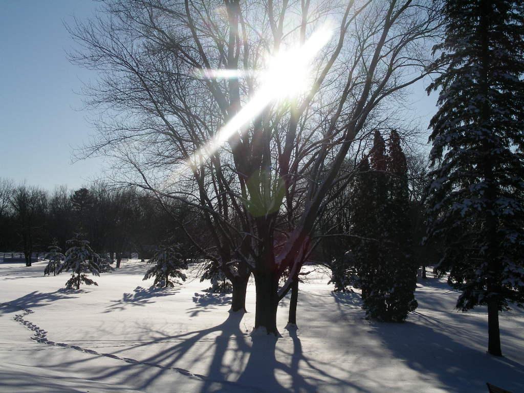 winter solstice - photo #20